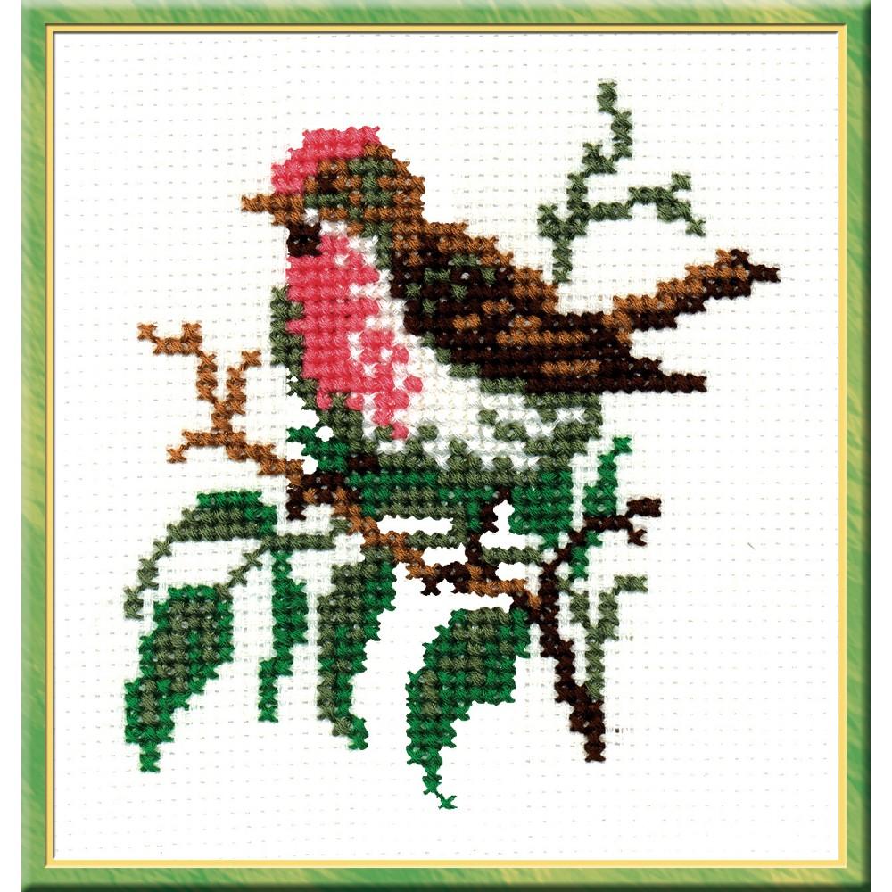 Набор для вышивания крестом Чечетка, 13 см х 12 см. 278642205Набор для вышивания Чечетка поможет вам создать свой личный шедевр - красивую картину, вышитую швом крест нитью в 4 сложения. Работа, выполненная своими руками, станет отличным подарком для друзей и близких! Набор содержит: - белая канва (размер: 25 см х 25 см), - мулине - 6 цветов, - игла, - цветная схема. Размер готовой работы: 13 см х 12 см. УВАЖАЕМЫЕ КЛИЕНТЫ! Обращаем ваше внимание, на тот факт, что рамка в комплект не входит, а служит для визуального восприятия товара.