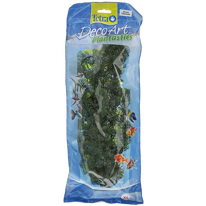 Искусственное растение для аквариума Tetra Кабомба XL607088Это растение хорошо подойдет для оформления аквариума. Естественно выглядящее искусственное растение; Для использования в любых аквариумах; Создает отличное место для укрытия (в т.ч. для метания икры); Легко и быстро устанавливается, является абсолютно безопасным; Не требует ухода; Долгое время не теряет форму и окраску. Высота растения: 38 см.