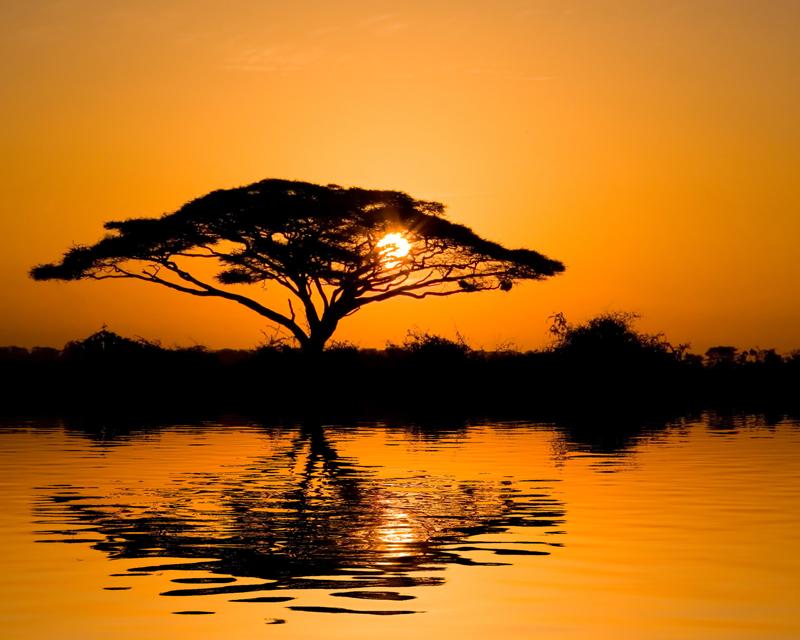 Картина на стекле Postermarket Африканский закат, 50 х 40 смAG 40-03Картина на стекле Postermarket - это новое слово в оформлении интерьера. Изделие выполнено из закаленного стекла, что обеспечивает устойчивость к внешним воздействиям, защиту от влаги и долговечность. Картина оформлена африканским пейзажем. С задней стороны имеется петелька для подвешивания к стене. Стильный, современный дизайн, а также яркие и насыщенные цвета сделают эту картину прекрасным дополнением интерьера комнаты.