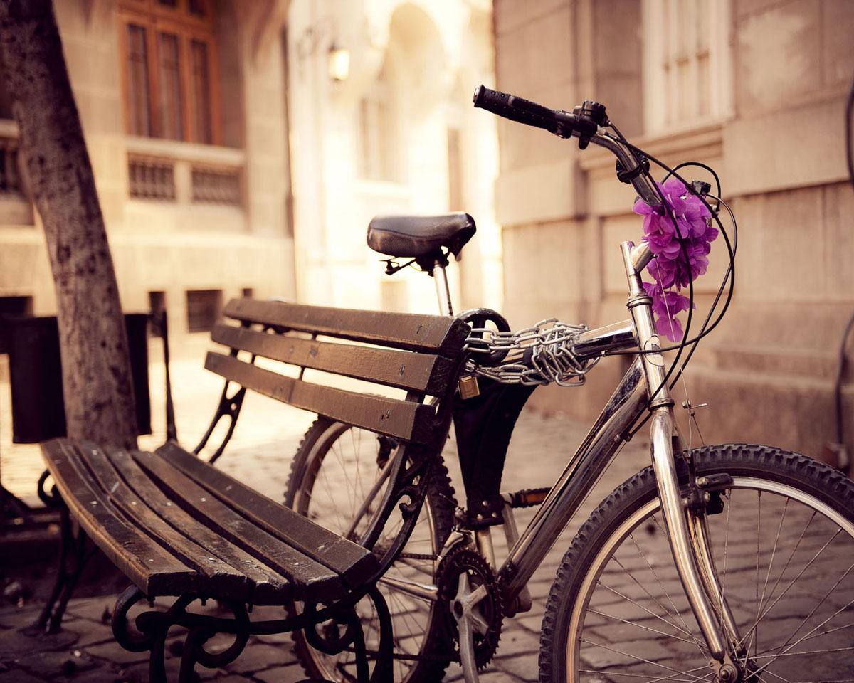 Картина на стекле Postermarket Велосипед, 50 см х 40 смAG 40-04Картина на стекле Postermarket - это новое слово в оформлении интерьера. Изделие выполнено из закаленного стекла, что обеспечивает устойчивость к внешним воздействиям, защиту от влаги и долговечность. Картина оформлена красочным изображением велосипеда, привязанного к скамейке. С задней стороны имеется петелька для подвешивания к стене. Стильный, современный дизайн, а также яркие и насыщенные цвета сделают эту картину прекрасным дополнением интерьера комнаты.