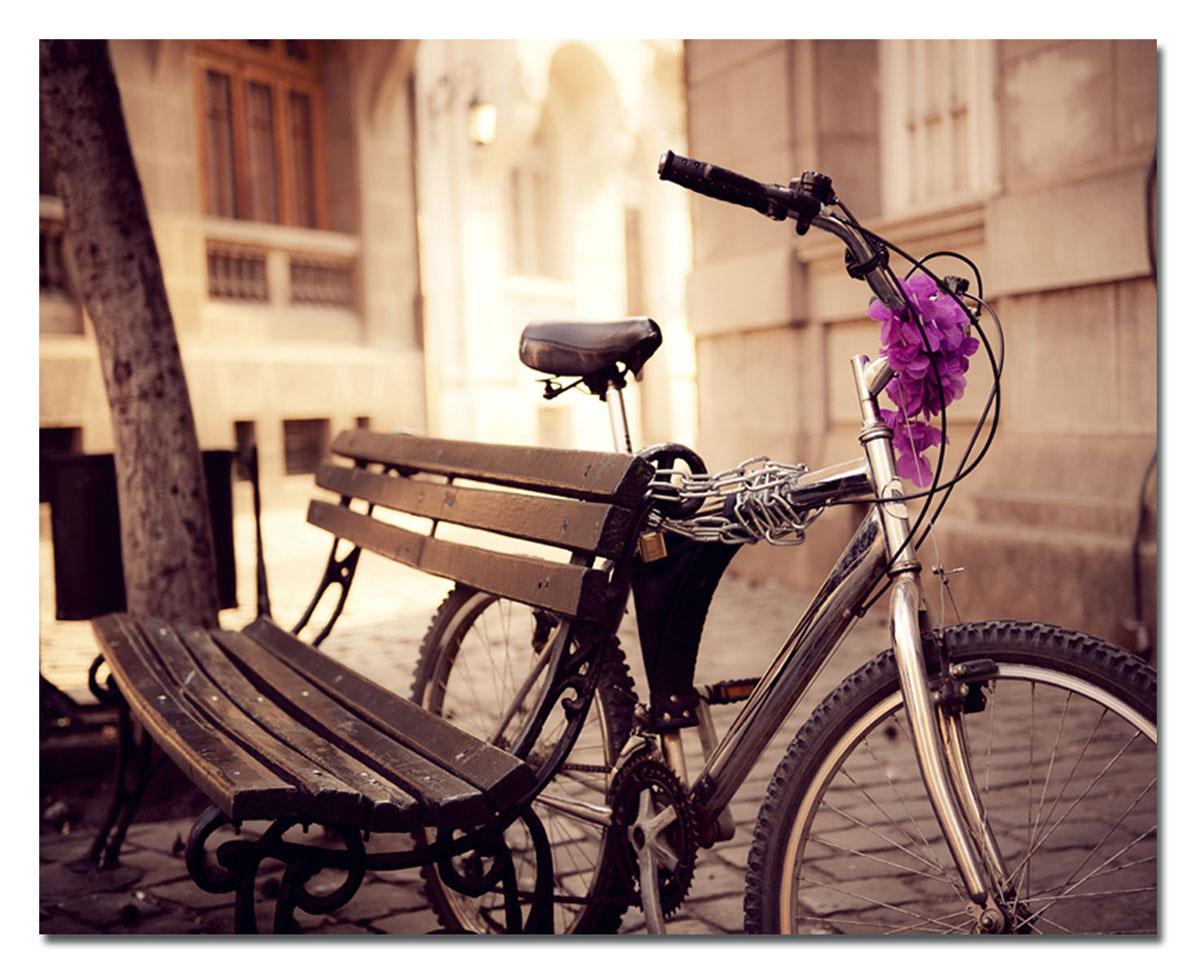 Канвас Idea Велосипед, 50 х 40 смIDEA CT3-04Канвас - это ткань с художественной фотопечатью, натянутая на деревянный каркас. Такое изделие - оригинальный декоративный элемент, способный преобразить любой интерьер. Картина оформлена красочным изображением велосипеда, привязанного к скамейке. С задней стороны имеется петелька для подвешивания к стене. Стильный, современный дизайн, а также яркие и насыщенные цвета сделают эту картину прекрасным дополнением интерьера комнаты.