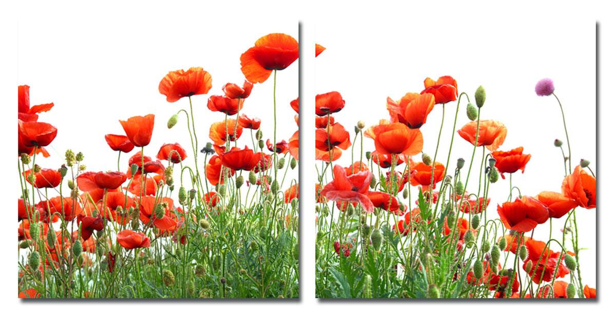 Канвас диптих Idea Красные цветы, 100 см х 50 см, 2 штIDEA FL2-08Канвас - это ткань (полиэстер) с художественной фотопечатью, натянутая на деревянный каркас. Диптих включает два элемента, которые образуют единый рисунок. Такое изделие - оригинальный декоративный элемент, способный преобразить любой интерьер. Картина оформлена красочным изображением красных цветов. С задней стороны имеются петельки для подвешивания к стене. Элементы следует размещать на стене, оставляя между ними небольшой промежуток. Стильный, современный дизайн, а также яркие и насыщенные цвета сделают эту картину прекрасным дополнением интерьера комнаты. Размер одного элемента: 50 см х 50 см. Общий размер диптиха: 100 см х 50 см.