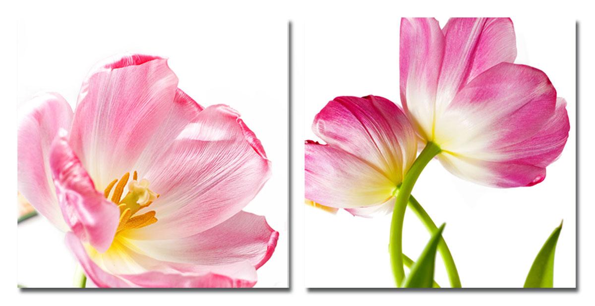 Канвас диптих Idea Розовые цветы, 100 х 50 см, 2 штIDEA FL2-09Канвас - это ткань (полиэстер) с художественной фотопечатью, натянутая на деревянный каркас. Диптих включает два элемента, которые образуют единый рисунок. Такое изделие - оригинальный декоративный элемент, способный преобразить любой интерьер. Картина оформлена красочным изображением розовых тюльпанов. С задней стороны имеются петельки для подвешивания к стене. Элементы следует размещать на стене, оставляя между ними небольшой промежуток. Стильный, современны