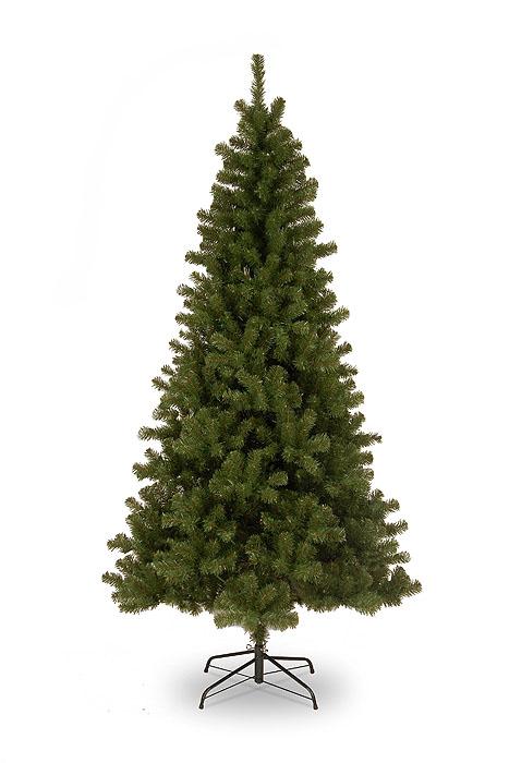 Ель Небраска высота 210 см, цвет: зеленый31HNEBR210Искусственная елка Небраска, выполненная их ПВХ - прекрасный вариант для оформления интерьера к Новому году. В комплект входит: металлическая подставка, болты, ствол, ветки, верхушка. Для сборки нужно соединить части и вставить веточки в пазы ствола. Веточки верхушки распушаются. Ветки елки достаточно толстые, что позволяет им не гнуться и не прогибаться под тяжестью игрушек, легко и быстро распушаются - каждая по отдельности. Иголки не осыпаются, не мнутся, со временем не выцветают. Сказочно красивая новогодняя елка украсит интерьер вашего дома и создаст теплую и уютную атмосферу праздника. Откройте для себя удивительный мир сказок и грез. Почувствуйте волшебные минуты ожидания праздника, создайте новогоднее настроение вашим дорогим и близким.