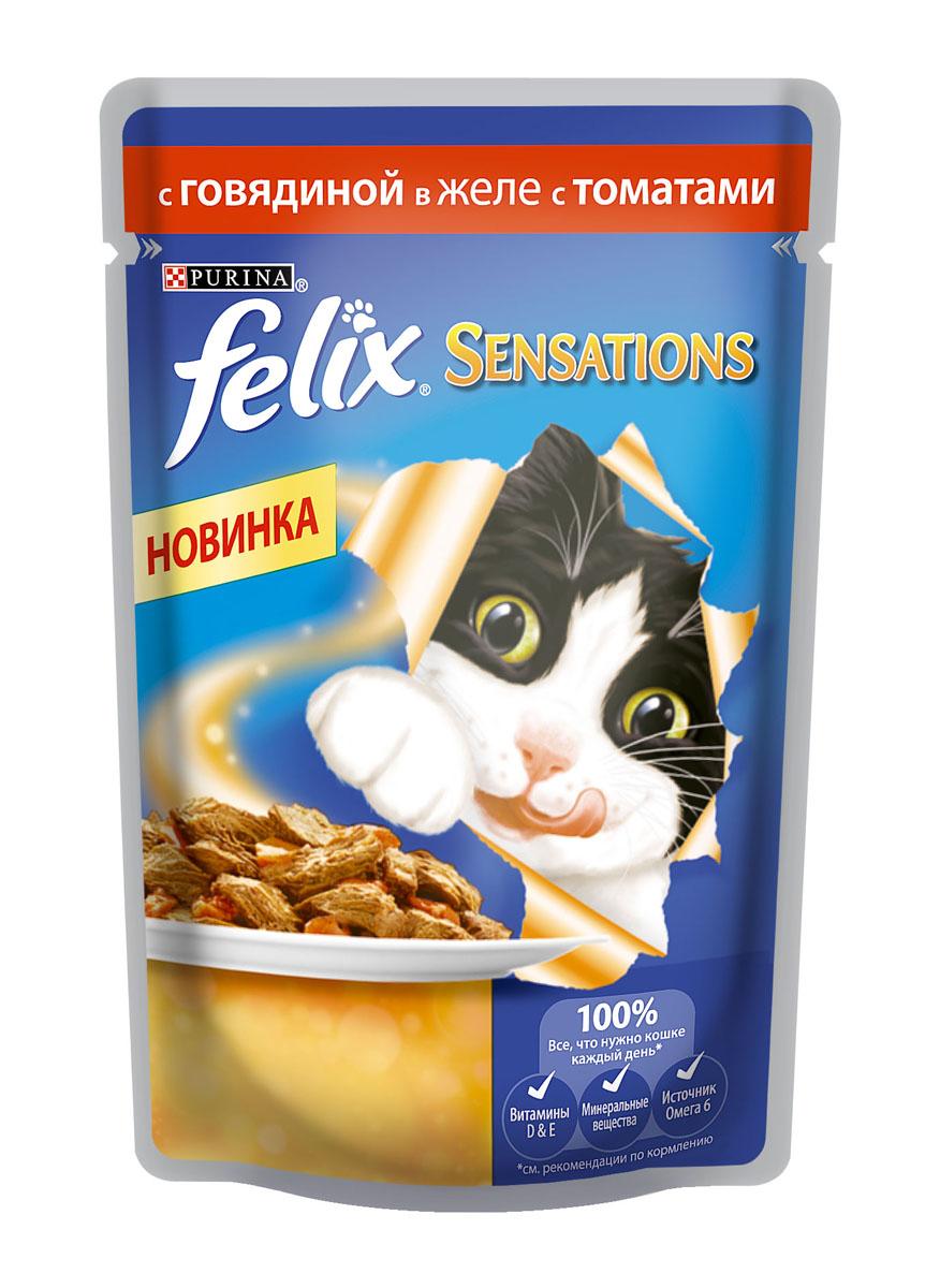 Консервы для кошек Felix Sensations, с говядиной в желе с томатами, 85 г12232833Консервированный корм для кошек Felix с говядиной в желе с томатами - полнорационный корм для взрослых кошек. Это нежные кусочки с мясом или рыбой, покрытые сочным желе с разными вкусами: томатов, моркови, шпината. Ароматные желе делают вкус корма особенно аппетитным и привлекательным для вашего питомца. Ваш кот будет есть такую вкуснятину хоть каждый день - на завтрак, обед и ужин. Состав: говядина: мясо и мясные субпродукты (из которых 4% говядины), растительные белковые экстракты, рыба и рыбные субпродукты, растительные субпродукты (4% томата в желе), минеральные вещества, сахар. Пищевые добавки: витамин A (1490 МЕ/кг), витамин D3 (230 МЕ/кг), витамин E (17 МЕ/кг), железо (10 мг/кг), йод (0,3 мг/кг), медь (0,9 мг/кг), марганец (2 мг/кг), цинк (10 мг/кг). Технологические добавки: E499 (2650 мг/кг). Аналитические составные части: влажность (80%), белки (13%), содержание жира (3%), сырая зола (2,2%), сырая клетчатка (0,5%), линолевая кислота (0,2%). ...