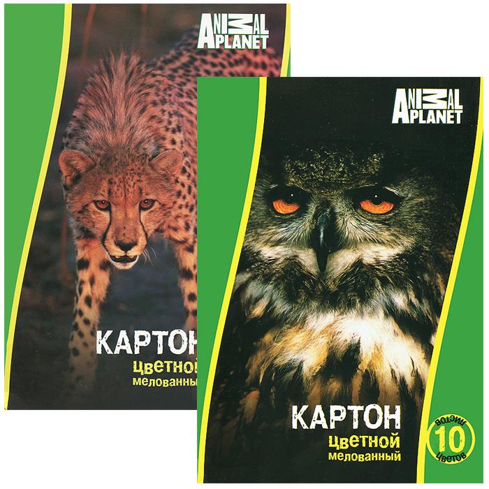 Набор цветного мелов. картона ACTION! ANIMAL PLANET, ф. А4, 10 листов,10 цветов(8цв.+золото и серебро), 2 шт. в упаковке, 2 дизайна, (ACTION!)AP-CC-10/10-2Набор цветного мелованного картона Action! Animal Planet позволит создавать всевозможные аппликации и поделки. Набор включает две упаковки одностороннего цветного картона, в каждой 10 листов формата А4 следующих цветов: желтого, зеленого, красного, оранжевого, белого, черного, коричневого, синего, золотистого и серебристого. Каждый из наборов упакован в картонную папку с изображением животного либо птицы. Создание поделок из цветного картона позволяет ребенку развивать творческие способности, кроме того, это увлекательный досуг.