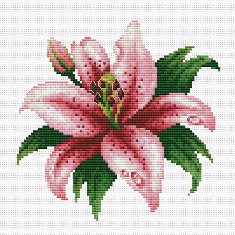 Набор для вышивания крестом Розовая лилия, 30 см х 30 см6003-14 Розовая лилия