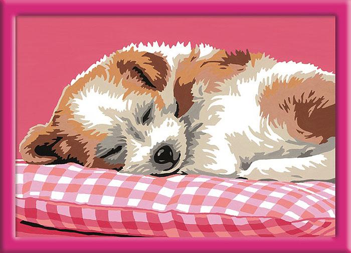 Ravensburger Раскрашивание по номерам Спящий щенок