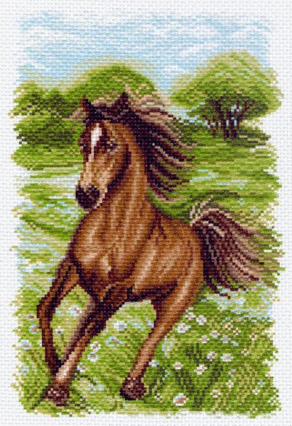 Канва с рисунком для вышивания