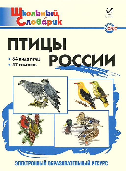 Птицы России. Школьный словарик