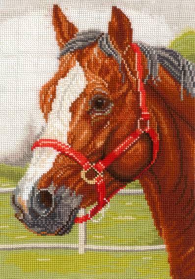 Набор для вышивания крестом Горячий конь, 18 х 26 см Г-05544142