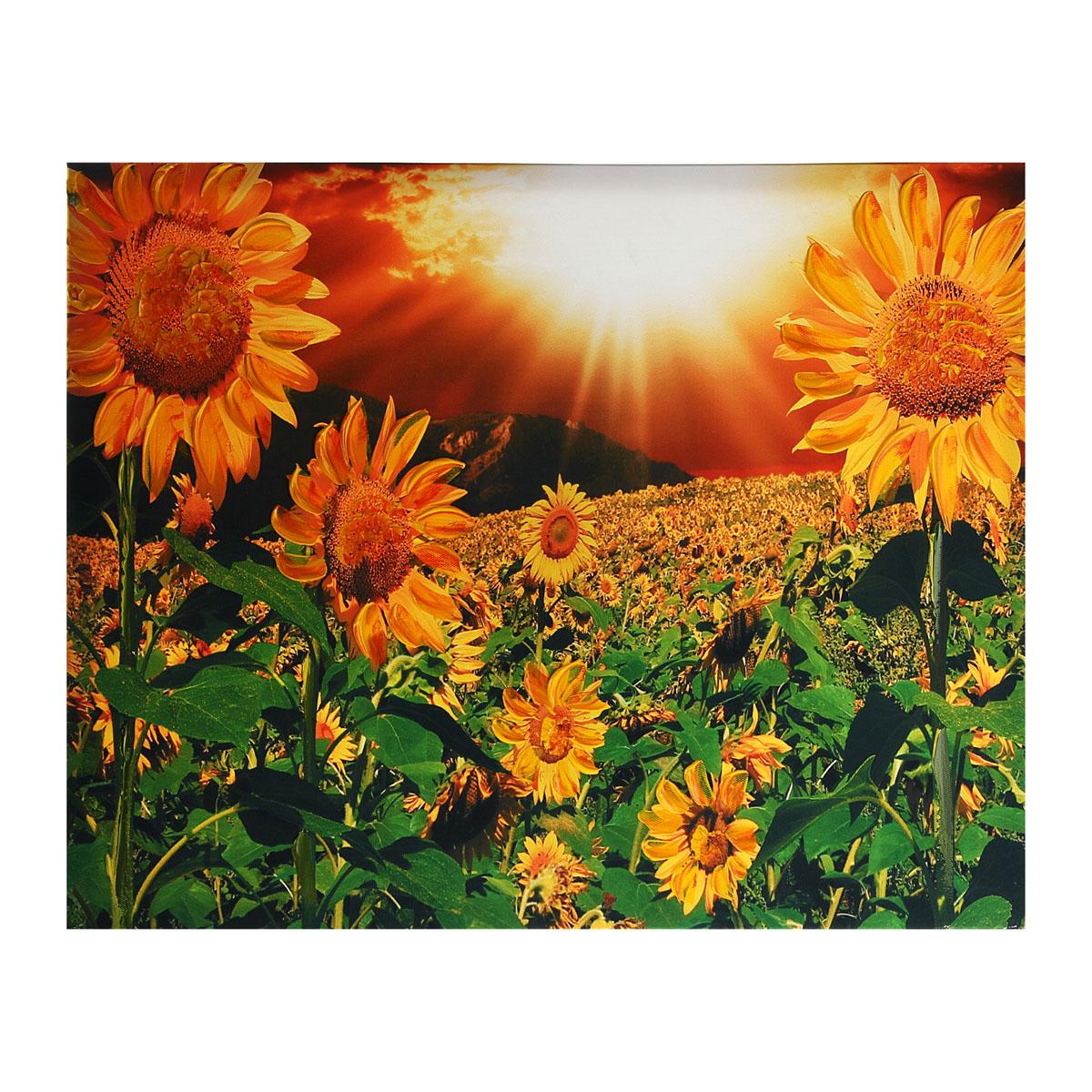 Картина на холсте Sima-land Подсолнухи под солнцем, 50 см х 40 см296668Картина Sima-land Подсолнухи под солнцем написана на холсте. На картине изображено поле с подсолнухами. Особое объемное изображение придает картине акрил, который нанесен поверх изображения. Картина на холсте акрилом - это классика современного живописного искусства. Картины акрилом всегда сохраняют яркий блеск, что придает картине живость. Из мелочей складывается стиль интерьера. Картина на холсте Sima-land Подсолнухи под солнцем одна из тех деталей, которые придают дому обжитой вид и создают ощущение уюта.