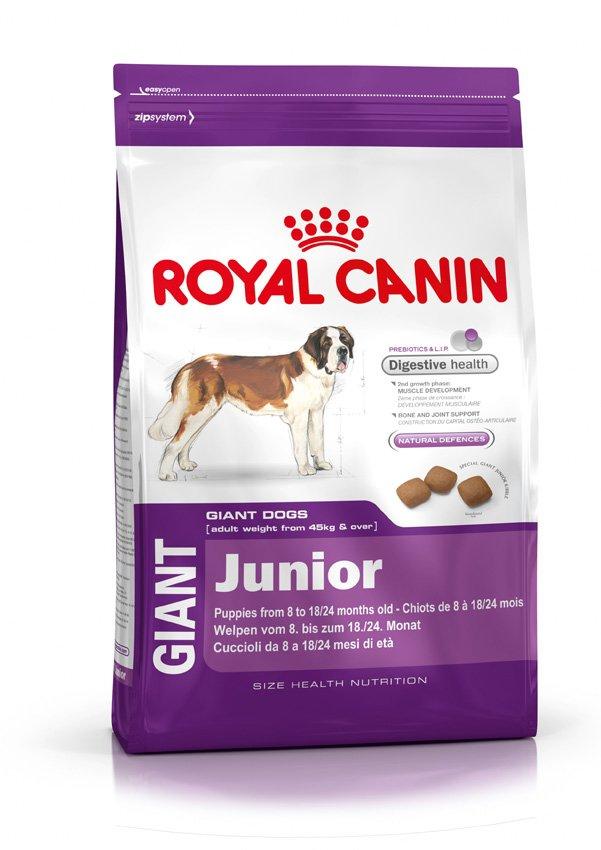 Корм сухой Royal Canin Giant Junior, для щенков собак очень крупных размеров, 4 кг197040Корм сухой Royal Canin Giant Junior - полнорационный сухой корм для щенков собак очень крупных размеров (вес взрослой собаки более 45 кг) в возрасте с 8 до 18/24 месяцев. Максимальная пищевая переносимость. Формула с содержанием высококачественных белков L.I.P, а также пребиотиков - фруктоолигосахаридов и маннановых олигосахаридов оказывает благоприятное воздействие на пищеварительную систему и поддерживает оптимальную консистенцию стула. Вторая фаза роста: развитие мышечной массы. Оптимальное количество белка и L-карнитина обеспечивают набор мышечной массы щенков собак очень крупных размеров во второй фазе роста (с 8 месяцев). Здоровье костей и суставов. Формула с оптимальным уровнем энергии и минералов (кальция и фосфора) способствует поддержанию костей и суставов щенков собак очень крупных размеров в период роста. Естественные механизмы защиты. Способствует поддержанию естественных защитных сил организма щенка благодаря...