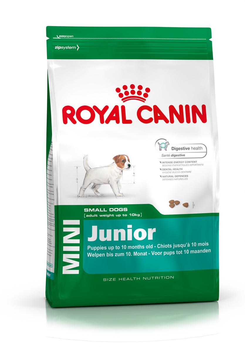 Корм сухой Royal Canin Mini Junior, для щенков мелких пород в возрасте от 2 до 10 месяцев, 4 кг305040Сухой корм Royal Canin Mini Junior является полнорационным кормом для щенков мелких собак (вес взрослой собаки от 1 до 10 кг) в возрасте до 10 месяцев. Особенности корма Royal Canin Mini Junior: Укрепляет иммунную защиту; Способствует прекрасному аппетиту щенка; Обеспечивает хорошую работу пищеварения; Крокеты обладают оптимальной текстурой и адаптированы к маленьким зубам. Состав: дегидратированные белки животного происхождения (птица), рис, животные жиры, изолят растительных белков, кукуруза, свекольный жом, кукурузная мука, гидролизат белков животного происхождения, кукурузная клейковина, соевое масло, рыбий жир, минеральные вещества, фруктоолигосахариды, гидролизат дрожжей (источник мaннановых олигосахаридов), экстракт бархатцев прямостоячих (источник лютеина). Пищевые добавки на 1 кг: витамин А 17300 МЕ, витамин D3 1000 МЕ, железо 43 мг, йод 3,4 мг, марганец 56 мг, цинк 186 мг, селен 0,07 мг, триполифосфат натрия 3,5 г, консервант,...