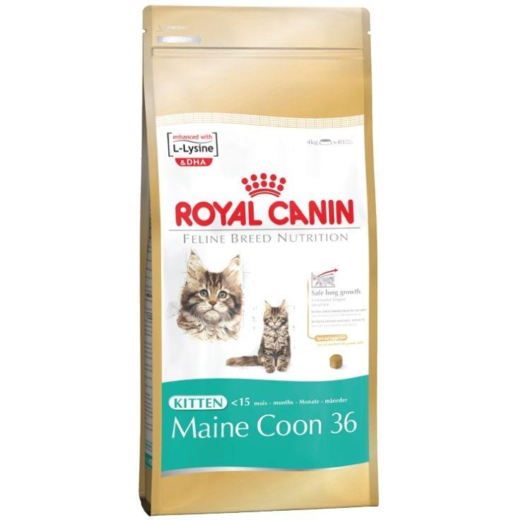 Корм сухой Royal Canin Maine Coon Kitten, для котят породы мейн-кун в возрасте от 3 до 15 месяцев, 2 кг543020Сухой корм Royal Canin Maine Coon Kitten - полнорационный корм для котят породы мейн-кун в возрасте от 3 до 15 месяцев. Фаза роста котят мейн-куна в силу их уникального экстерьера более продолжительна, чем у кошек других пород. Удивительный факт: трехмесячный мейн-кун весит около 2 кг — почти вдвое больше, чем котята других пород в этом возрасте! Длительный период роста. В силу своей особой комплекции котенок породы мейн-кун достигает зрелости только к 15 месяцам или даже позже. Длительный период роста означает, что диета для котят должна отвечать их специфическим потребностям в энергии: это обеспечит гармоничное и сбалансированное развитие. Для того чтобы обеспечить максимально сбалансированное развитие, следует заказать онлайн специальный корм, подходящий для этой породы. Чемпион по весу среди котят. Уже очень скоро котенок мейн-куна опережает по весу своих сверстников — представителей других пород кошек. Постепенно формируются массивные кости и мощные мышцы....