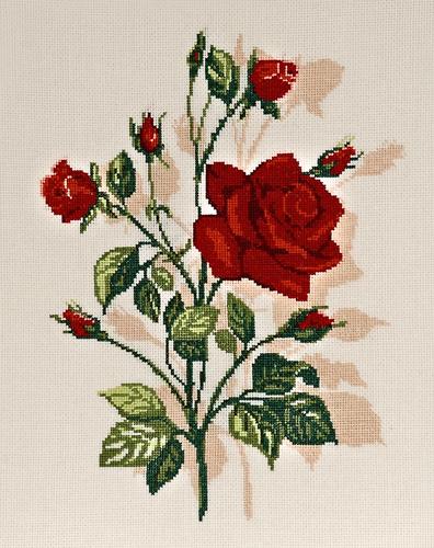 Набор для вышивания крестом Alisena Роза, 28 х 21 см Art-1159547190Набор для вышивания крестиком Alisena Роза поможет вам создать свой личный шедевр - красивую картину, вышитую нитками. В набор входит: - канва Aida №16 Zweigart цвета слоновой кости (100% хлопок), - мулине Anchor - разработано и закреплено на органайзере, - игла, - символьно-цветная схема, - инструкция на русском языке. Размер готовой работы: 28 см х 21 см (185 х 138 крестиков). Количество цветов: 11. Работа, выполненная своими руками, станет отличным подарком для друзей и близких! Работа, выполненная своими руками, станет отличным подарком для друзей и близких!