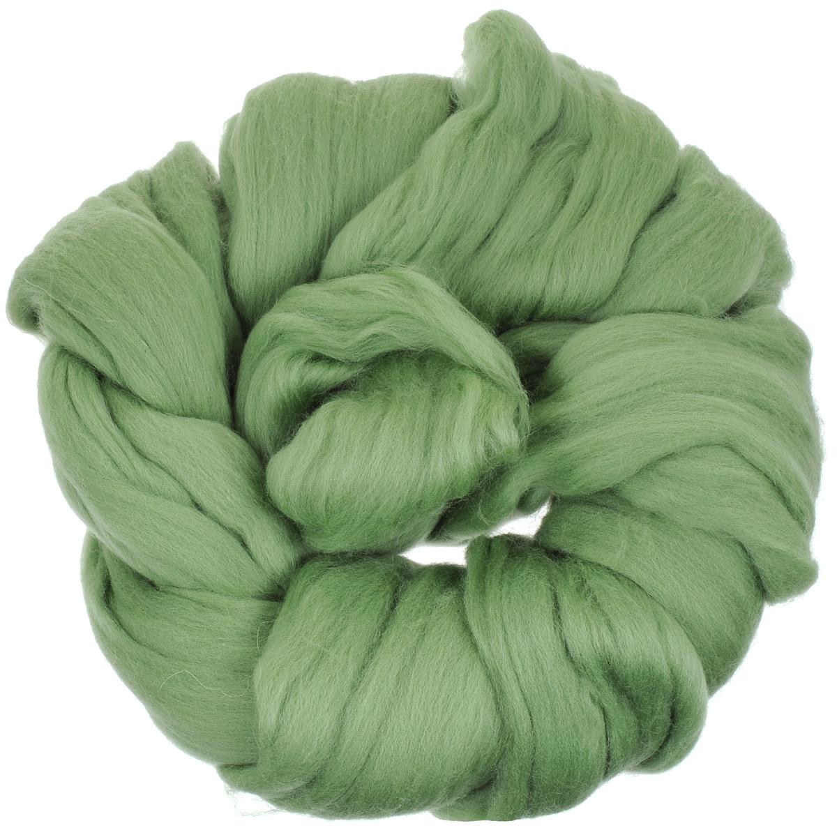 Шерсть для валяния Астра, тонкая, цвет: зеленое яблоко (0582), 100 г366137_0582