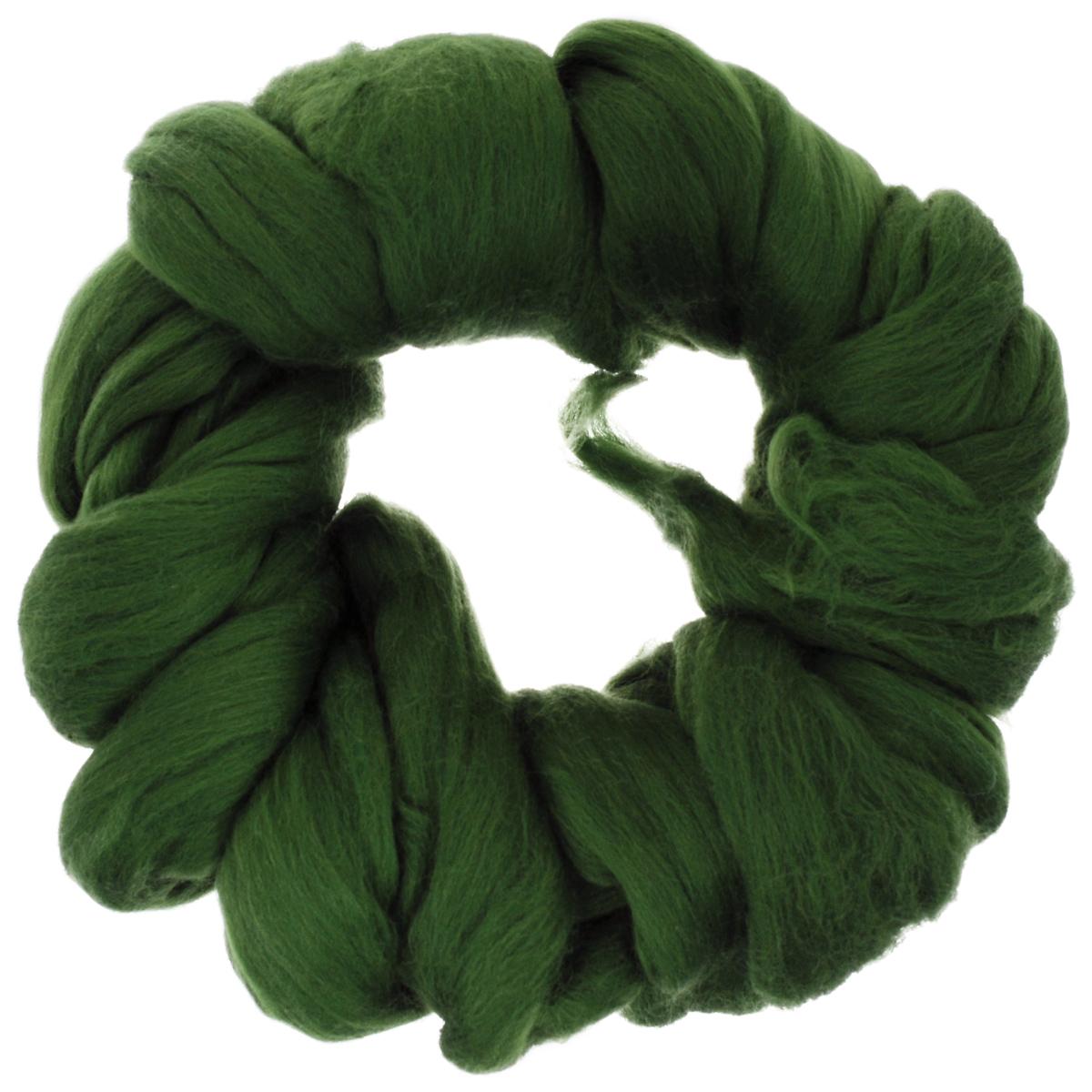 Шерсть для валяния Астра, тонкая, цвет: морские водоросли (1384), 100 г366137_1384