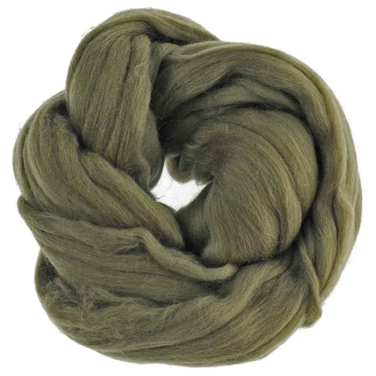 Шерсть для валяния Астра, тонкая, цвет: хаки (0683), 50 г679103_0683