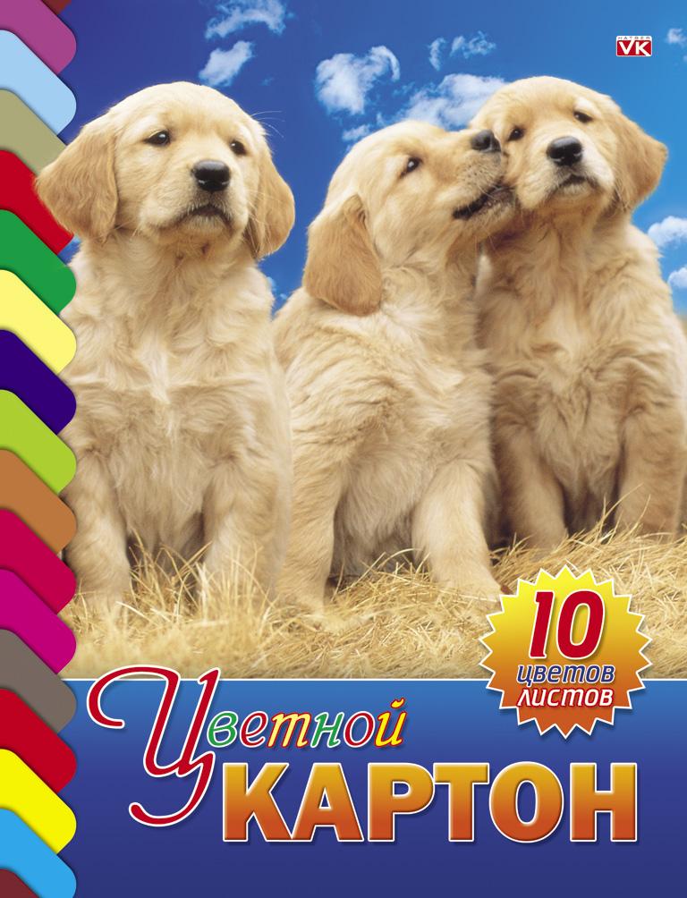Цветной картон Hatber Три щенка, 10 листов10Кц4к_01021Набор бумаги и цветного картона Hatber Три щенка позволит вашему малышу раскрыть свой творческий потенциал. Набор содержит 10 листов цветного картона оранжевого, золотого, серебряного, желтого, черного, коричневого, зеленого, голубого, фиолетового, красного цветов. На внутренней стороне обложки расположено изображение очаровательного щенка и бабочки, которое малыш сможет раскрасить по своему желанию. Создание поделок из картона - это увлекательнейший процесс, способствующий развитию у ребенка фантазии и творческого мышления. Набор не содержит каких-либо инструкций - ребенок может дать волю своей фантазии и создавать собственные шедевры! Набор прекрасно подойдет для создания аппликаций и изготовления поделок из картона. Порадуйте своего малыша таким замечательным подарком!