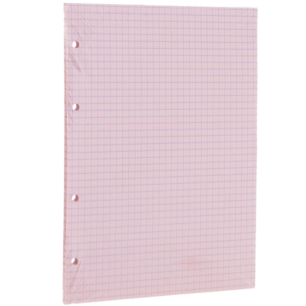 Сменный блок в клетку Erich Krause, для тетрадей на кольцах, цвет: розовый, 80 листов32990Сменный блок Erich Krause предназначен для тетрадей с кольцевым механизмом. Листы выполнены из бумаги розового цвета в голубую клетку.