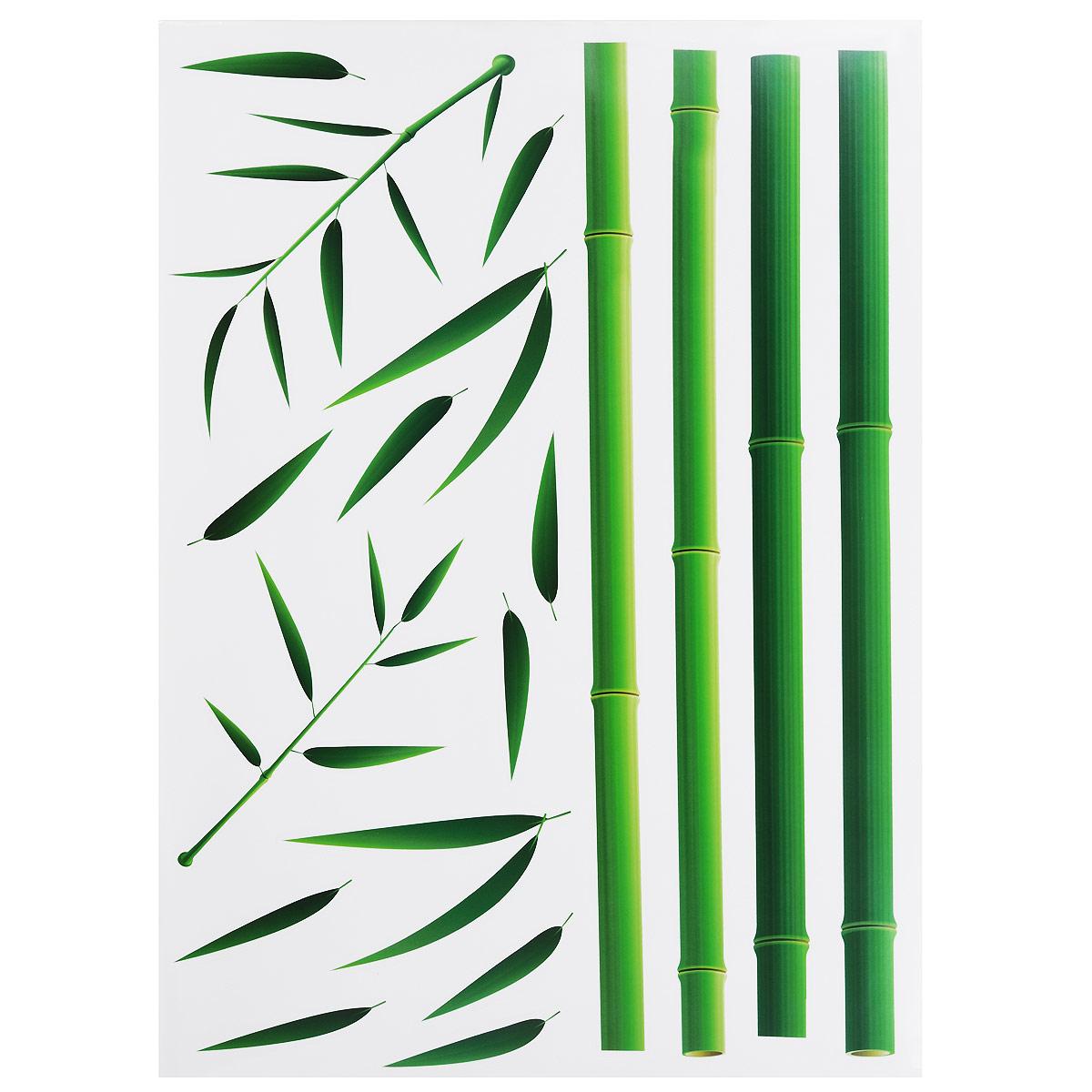 Наклейки для интерьера Стрекоза Бамбук, 48 см х 65 см, 2 шт. HD-00533418Наклейки для стен и предметов интерьера Стрекоза Бамбук, изготовленные из экологически безопасной самоклеящейся пленки - это удивительно простой и быстрый способ оживить интерьер помещения. На каждом из двух листов расположены наклейки в виде ствола и листьев бамбука, которые собираются из нескольких деталей. Интерьерные наклейки дадут вам вдохновение, которое изменит вашу жизнь и поможет погрузиться в мир красок, фантазий и творчества. Для вас открываются безграничные возможности придумать оригинальный дизайн и придать новый вид стенам и мебели. Наклейки абсолютно безопасны для здоровья. Они быстро и легко наклеиваются на любые ровные поверхности: стены, окна, двери, кафельную плитку, виниловые и флизелиновые обои, стекла, мебель. При необходимости удобно снимаются, не оставляют следов и не повреждают поверхность (кроме бумажных обоев). Наклейки Стрекоза Бамбук помогут вам изменить интерьер вокруг себя: в детской комнате и гостиной, на кухне и в прихожей,...