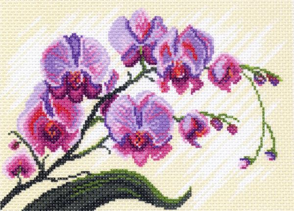 Канва с рисунком для вышивания Орхидея, 28 см х 34 см. 426195_1318426195_1318Канва с рисунком для вышивания Орхидея изготовлена из хлопка. Вышивка выполняется в технике полный крестик в 2-3 нити или полукрестом в 4 нити. Создайте свой личный шедевр - красивую вышитую картину. Работа, выполненная своими руками, станет отличным подарком для друзей и близких! УВАЖАЕМЫЕ КЛИЕНТЫ! Обращаем ваше внимание, на тот факт, что цвет символа на ткани может отличаться от реального цвета нити мулине. Рекомендуемое количество цветов: 18.