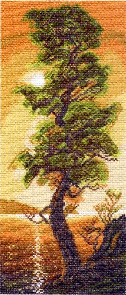 Канва с рисунком для вышивания Байкальский кедр, 24 см х 47 см. 426787_1308549811Канва с рисунком для вышивания Байкальский кедр изготовлена из хлопка. Вышивка выполняется в технике полный крестик в 2-3 нити или полукрестом в 4 нити. Создайте свой личный шедевр - красивую вышитую картину. Работа, выполненная своими руками, станет отличным подарком для друзей и близких! УВАЖАЕМЫЕ КЛИЕНТЫ! Обращаем ваше внимание, на тот факт, что цвет символа на ткани может отличаться от реального цвета нити мулине. Рекомендуемое количество цветов: 18.