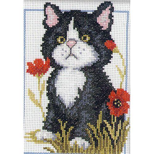 Набор для вышивания крестом RTO Черный котенок, 12 х 16 см182185Набор для вышивания крестом RTO Черный котенок поможет вам создать свой личный шедевр - красивую картину, вышитую нитками мулине в технике счетный крест. Работа, выполненная своими руками, станет отличным подарком для друзей и близких! Набор содержит: - белая канва Aida № 14 (хлопок) без рисунка, - мулине DMC (хлопок) - 13 цветов, - игла, - схема для вышивания, - инструкция на русском языке.