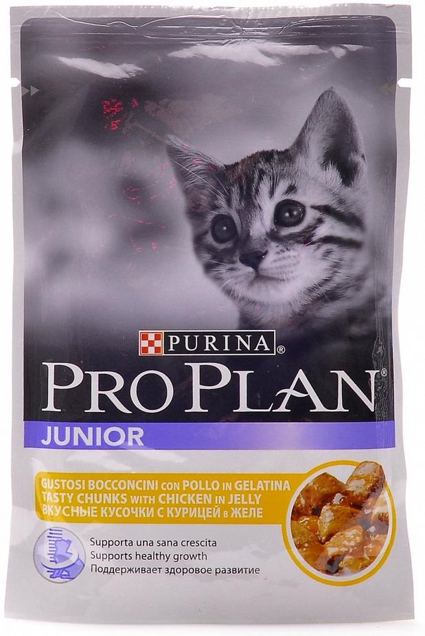 Консервы для котят Pro Plan Junior, с курицей, 85 г48144Полнорационные консервы Pro Plan Junior со вкусом, который нравится кошкам, содержит все необходимые питательные вещества, включая витамины в большом количестве, для поддержания здорового роста. Состав: мясо и мясные субпродукты (в том числе курица 9%), рыба и рыбные субпродукты, минеральные вещества, различные сахара, витамины. Добавленные вещества: МЕ/кг: витамин А 1050, витамин D3 145, мг/кг: железо 31, йод 0,59, медь 3,8, марганец 5,4, цинк 75, селен 0,05. Гарантируемые показатели: влажность: 82%, белок 9,5%, жир 4,3%, сырая зола 2,4%, сырая клетчатка 0,4%. Товар сертифицирован.