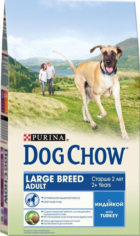 Корм сухой Dog Chow для взрослых собак крупных пород, с индейкой, 2,5 кг12233238Сухой корм Dog Chow - 100% полнорационный и сбалансированный корм для собак крупных пород от 2 лет, с индейкой. Содержит много мяса и помогает взрослым собакам крупных пород (с массой тела >25 кг) поддерживать оптимальную массу тела и сохранять высокую подвижность. Оптимальное соотношение белков и жиров помогает вашей собаке оставаться подтянутой и сохранять гармоничное телосложение. Незаменимые аминокислоты для поддержания функции жизненно важных органов, включая сердце. Специальные омега-3 жирные кислоты способствуют сохранению хорошей подвижности и благоприятно воздействуют на суставы. Корм содержит омега-6 жирную кислоту и цинк для поддержания естественной влаги и эластичности кожи. Содержит натуральный пребиотик, улучшающий работу пищеварительной системы. Цикорий - источник натурального пребиотика, который, как показали исследования, способствует росту численности полезных кишечных бактерий и нормализации деятельности...