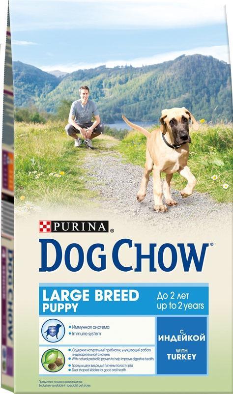 Корм сухой Dog Chow для щенков крупных пород, с индейкой, 2,5 кг12233239Корм сухой Dog Chow - полнорационный и сбалансированный корм для щенков крупных пород до 2 лет с индейкой. Подходит для кормления беременных и лактирующих собак крупных пород. Высокое содержание мяса. Создан специально для поддержания естественных защитных механизмов и обеспечения правильного роста щенков крупных пород (ожидаемая масса тела взрослой собаки >25 кг). Иммунная система. Корм содержит витамин Е, который в качестве антиоксиданта участвует в борьбе со свободными радикалами и укрепляет естественную защиту организма. Необходимые минеральные элементы и витамины для формирования крепких зубов и костей. Оптимальное соотношение белков и жиров для гармоничного роста вашего щенка крупной породы. Содержит омега-3 жирную кислоту, необходимую для развития головного мозга и зрительного аппарата. Гранулы двух видов помогают щенку научиться пережевывать пищу, что способствует формированию правильного пищевого поведения,...
