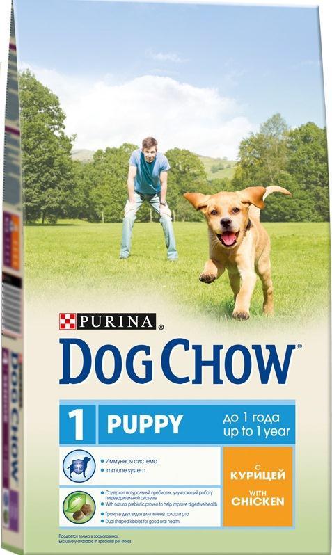 Корм сухой для щенков Dog Chow, с курицей, 2,5 кг12233246Корм сухой Dog Chow - полнорационный корм для щенков, с курицей. Подходит для кормления беременных и лактирующих собак, а также взрослых собак мелких пород. Иммунная система. Корм для щенков содержит витамин Е, который в качестве антиоксиданта участвует в борьбе со свободными радикалами и укрепляет естественную защиту организма. Содержит натуральный пребиотик, улучшающий работу пищеварительной системы. Цикорий - источник натурального пребиотика, который, как показали исследования, способствует росту численности полезных кишечных бактерий и нормализации деятельности пищеварительной системы. Через 30 дней питания кормом Dog Chow количество бифидобактерий может возрастать в 100 раз, помогая вашей собаке сохранять хорошее пищеварение. Гранулы двух видов помогают щенку научиться пережевывать пищу, что способствует формированию правильного пищевого поведения, обеспечивает достаточное потребление калорий и гигиену ротовой полости с первых...