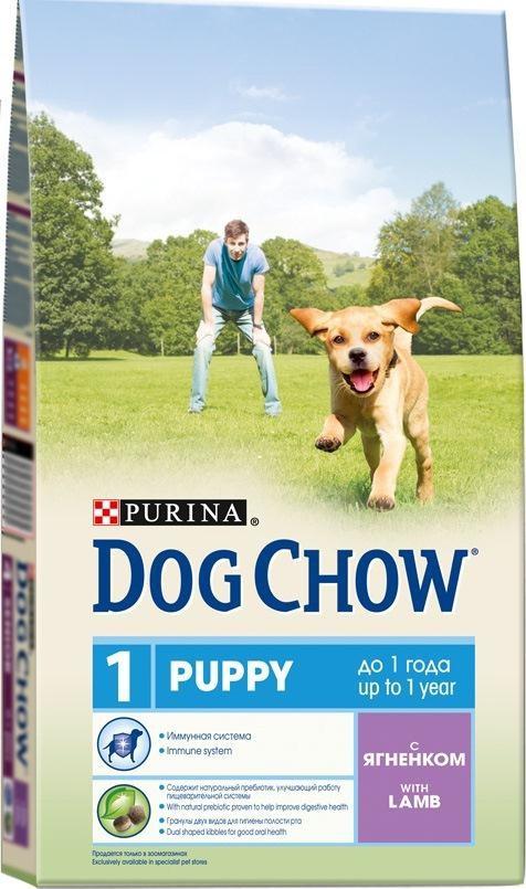 Корм сухой для щенков Dog Chow, с ягненком, 14 кг12260304Корм сухой Dog Chow - полнорационный корм для щенков до 1 года с ягненком. Подходит для кормления беременных и лактирующих собак, а также взрослых собак мелких пород. Иммунная система. Корм для щенков содержит витамин Е, который в качестве антиоксиданта участвует в борьбе со свободными радикалами и укрепляет естественную защиту организма. Содержит натуральный пребиотик, улучшающий работу пищеварительной системы. Цикорий - источник натурального пребиотика, который, как показали исследования, способствует росту численности полезных кишечных бактерий и нормализации деятельности пищеварительной системы. Через 30 дней питания кормом Dog Chow количество бифидобактерий может возрастать в 100 раз, помогая вашей собаке сохранять хорошее пищеварение. Гранулы двух видов помогают щенку научиться пережевывать пищу, что способствует формированию правильного пищевого поведения, обеспечивает достаточное потребление калорий и гигиену ротовой полости с...