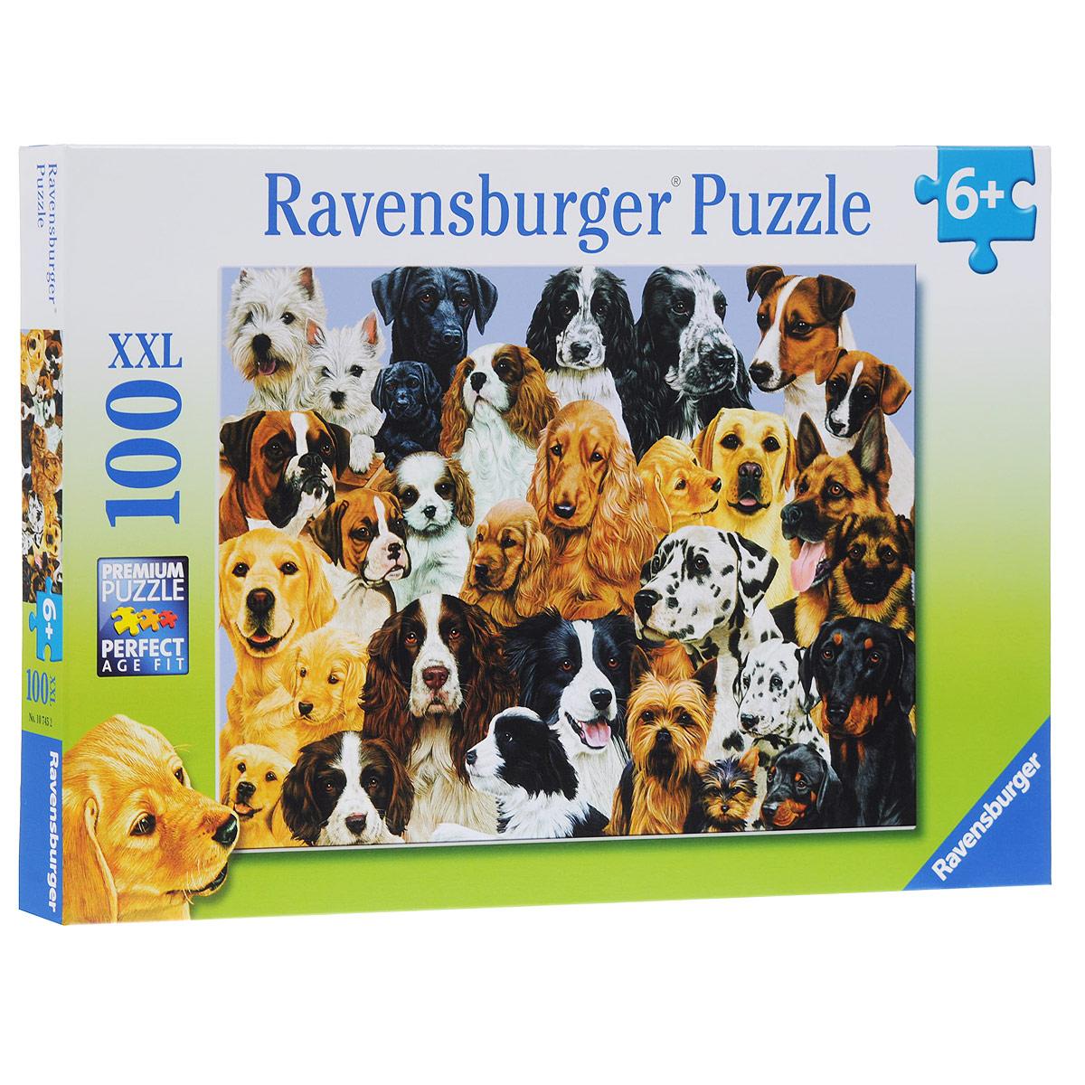 Ravensburger Парад собак. Пазл XXL, 100 элементов10745Пазл Ravensburger Парад собак, без сомнения, придется по душе вам и вашему малышу. Собрав этот пазл, включающий в себя 100 элементов, вы получите великолепную картину с изображением собак самых различных пород. Каждая деталь имеет свою форму и подходит только на своё место. Нет двух одинаковых деталей! Пазл изготовлен из картона высочайшего качества. Все изображения аккуратно отсканированы и напечатаны на ламинированной бумаге. Пазл - великолепная игра для семейного досуга. Сегодня собирание пазлов стало особенно популярным, главным образом, благодаря своей многообразной тематике, способной удовлетворить самый взыскательный вкус. А для детей это не только интересно, но и полезно. Собирание пазла развивает мелкую моторику у ребенка, тренирует наблюдательность, логическое мышление, знакомит с окружающим миром, с цветом и разнообразными формами.