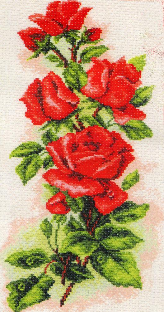 Набор для вышивания крестом Алые розы, 15 х 37 см 1074176858Набор для вышивания крестом Алые розы поможет вам создать свой личный шедевр - красивую картину, вышитую нитками мулине в технике счетный крест. Работа, выполненная своими руками, станет отличным подарком для друзей и близких! Набор содержит: - канва №5,5 (хлопок) с нанесенным цветным рисунком, размер канвы 24 см х 47 см, - мулине (100% хлопок), - игла, - инструкция на русском языке.