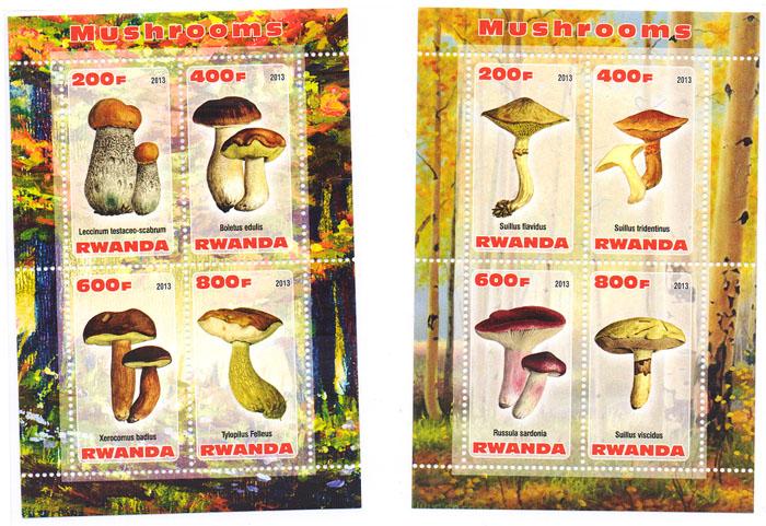 Комплект из 2 почтовых блоков Грибы. Руанда, 2013 годK421306Комплект из 2 почтовых блоков Грибы. Руанда, 2013 год. Размер блока: 11 х 7.5 см. Размер марок: 4.5 х 2.5 см. Сохранность хорошая.