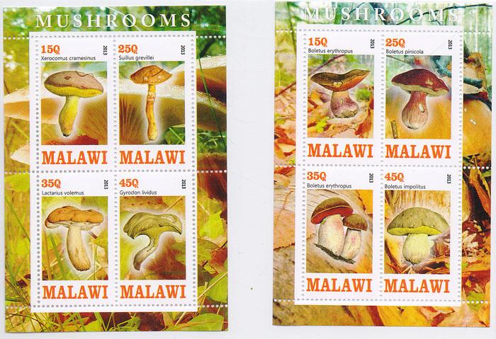 Комплект из 2 почтовых блоков Грибы. Малави, 2013 годK421306Комплект из 2 почтовых блоков Грибы. Малави, 2013 год. Размер блока: 11 х 7.5 см. Размер марок: 4.5 х 2.5 см. Сохранность хорошая.