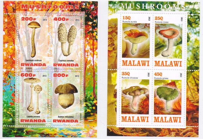 Комплект из 2 почтовых блоков Грибы. Малави, Руанда, 2013 годK421306Комплект из 2 почтовых блоков Грибы. Малави, Руанда, 2013 год. Размер блока: 11 х 7.5 см. Размер марок: 4.5 х 2.5 см. Сохранность хорошая.