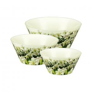 Набор чаш Альтернатива Шарлотта, цвет: белый, зеленый, 3 штМ2202Набор чаш Альтернатива Шарлотта состоит из трех чаш, изготовленных из пластика и оформленных ярким изображением цветов. Чаши прекрасно подойдут для подачи супов и бульонов. Функциональный и оригинальный, набор чаш Шарлотта великолепно украсит ваш стол.