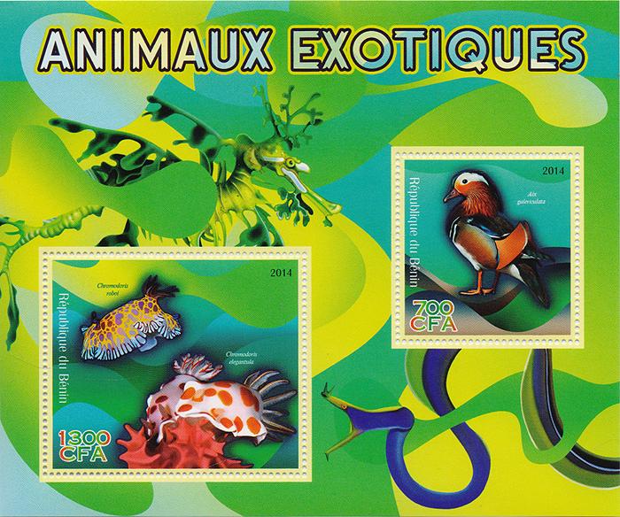 Почтовый блок Экзотические животные. Бенин, 2014 годK421306Почтовый блок Экзотические животные. Бенин, 2014 год. Размер блока: 12 х 14 см. Размер марок: 4.5 х 4 см, 5 х 6 см. Сохранность хорошая.