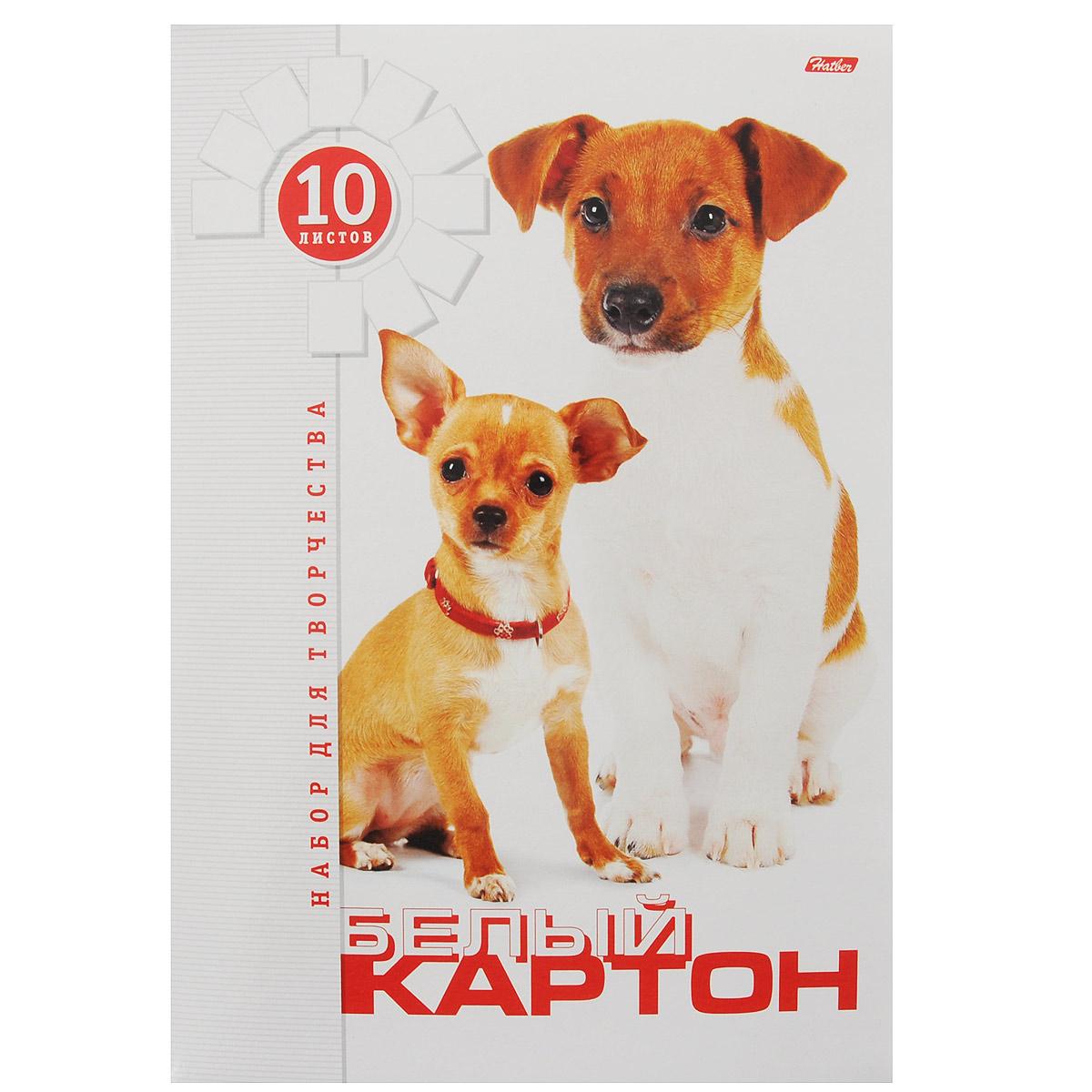 Картон Hatber Два щенка, цвет: белый, 10 листов10Кб4_05284Картон Hatber Два щенка позволит вашему ребенку создавать всевозможные аппликации и поделки. Набор состоит из десяти листов картона белого цвета с полуглянцевым покрытием формата А4. Картон упакован в оригинальную картонную папку, оформленную изображением двух щенков. На внутренней стороне обложки расположена раскраска в виде доброго щенка. Создание поделок из картона поможет ребенку в развитии творческих способностей, кроме того, это увлекательный досуг. Рекомендуемый возраст от 6 лет.