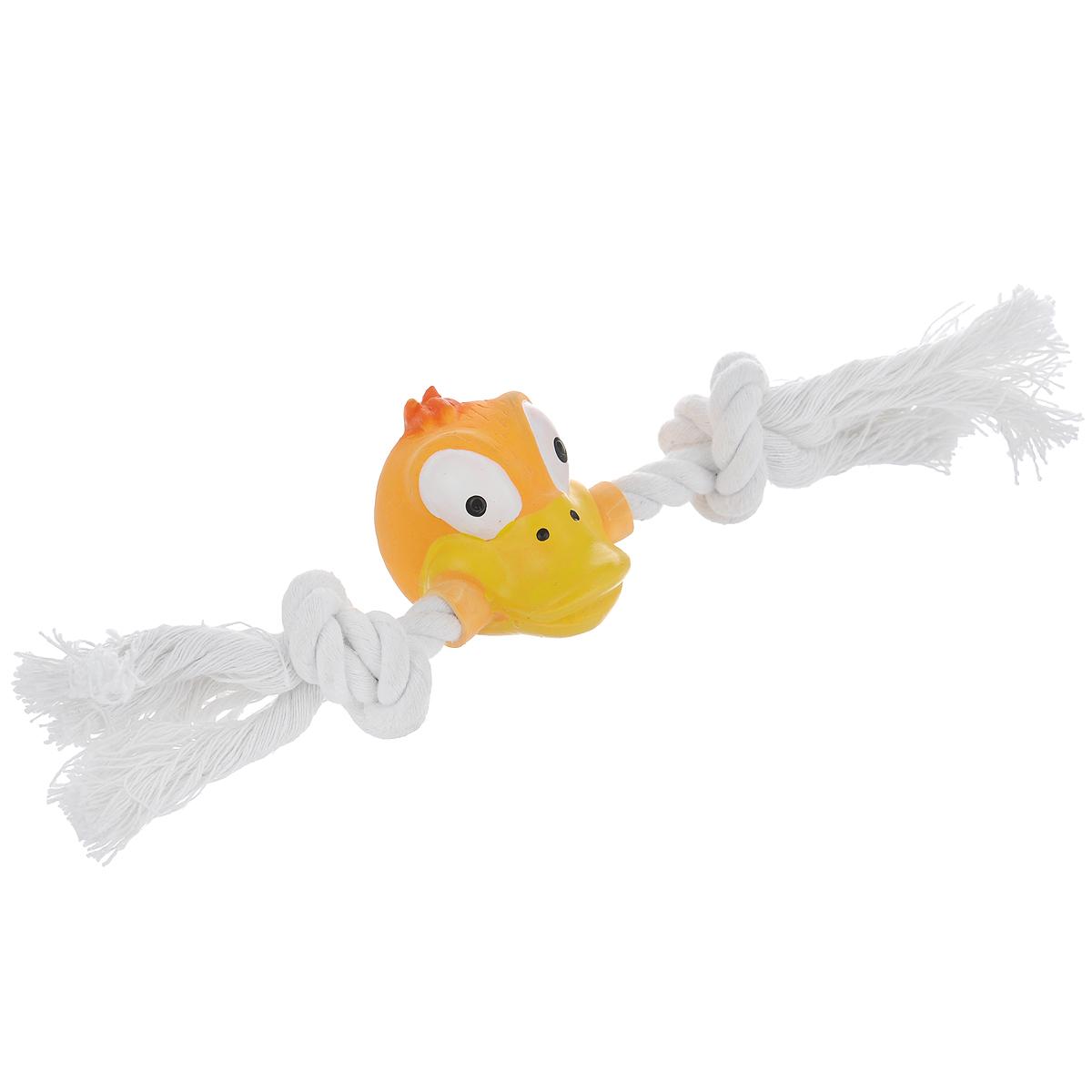 Игрушка для собак Ziver