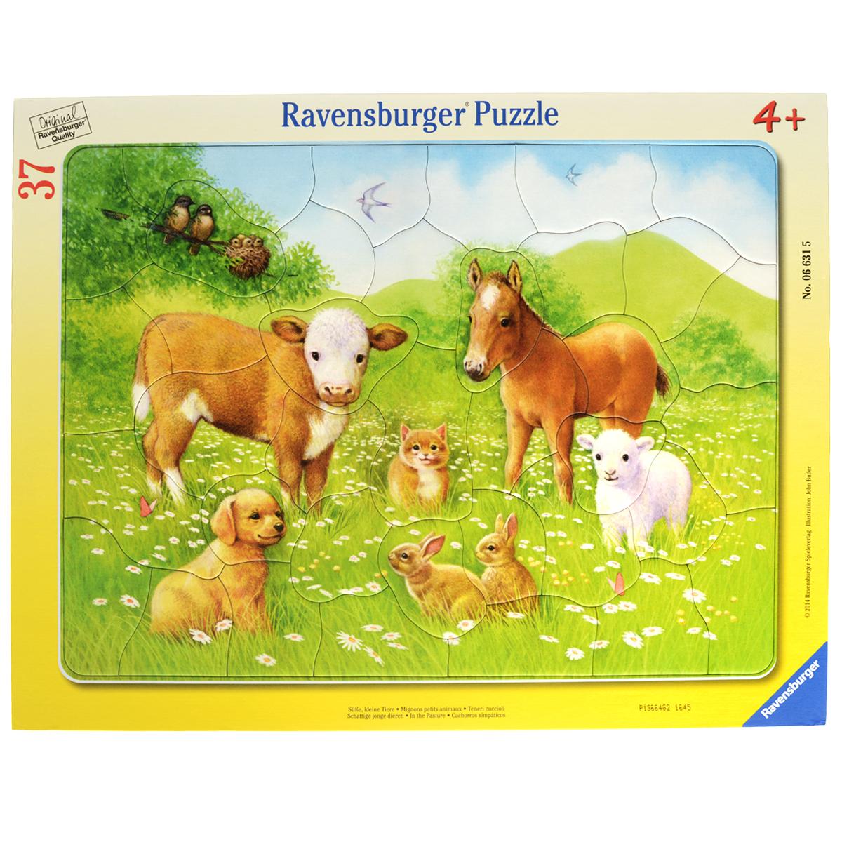 Ravensburger На лугу. Пазл, 37 элементов06631Пазл Ravensburger На лугу, несомненно, понравится вашему ребенку. Собрав этот пазл, включающий в себя 37 крупных элементов, вы получите замечательную картинку с изображением детенышей домашних животных. Пазл собирается на специальной картонной подложке. Элементы пазла достаточно крупные, что идеально подойдет для самых маленьких. Пазлы - замечательная развивающая игра для детей. Собирание пазла развивает у ребенка мелкую моторику рук, тренирует наблюдательность, логическое мышление, знакомит с окружающим миром, с цветом и разнообразными формами, учит усидчивости и терпению, аккуратности и вниманию.