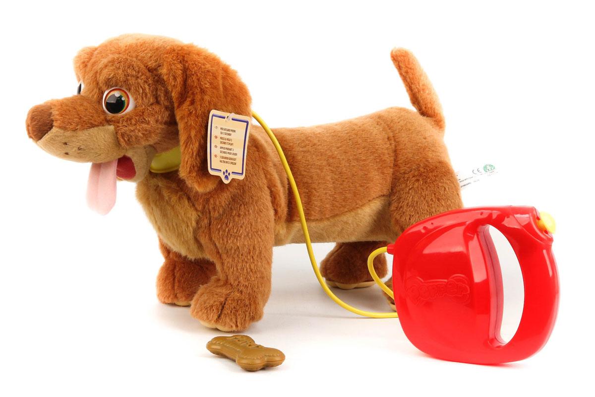 Собака GPH06334 Pepper интерактивная на батарейках в коробке 25,5*40,8*29,5смGPH06334Плюшевый игривый щенок таксы Pepper ведет себя совсем как настоящий и ему просто необходима ваша забота и ласка. Щенок Pepper умеет ходить, сидеть, вилять хвостиком, радостно лаять и скулить. Благодаря тому, что у щенка гибкое туловище при движении он может поворачивать вправо или влево.
