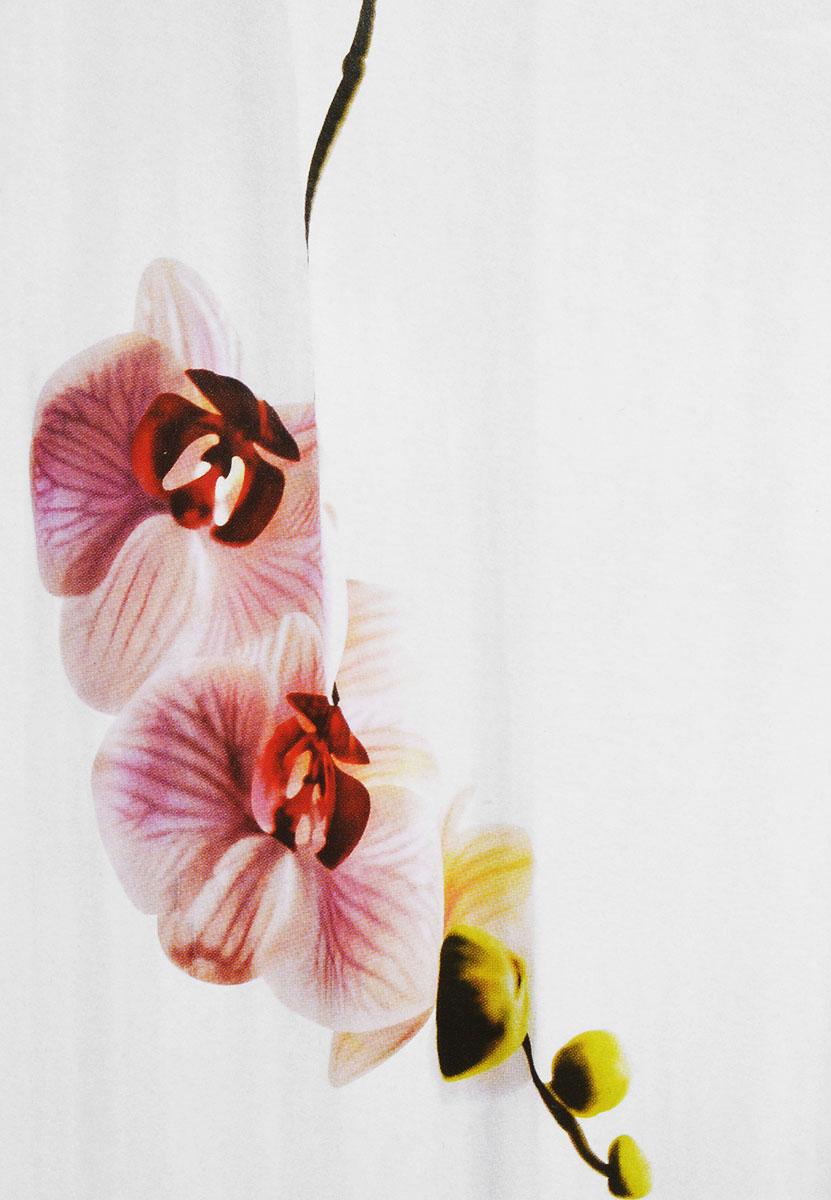 Штора для ванной комнаты White Fox Орхидея, цвет: белый, коричневый, 180 х 200 смWBCH10-336Штора для ванной комнаты White Fox Орхидея выполнена из полиэстера с водоотталкивающей и антибактериальной пропиткой. В нижний край вшит утяжелитель змейка, который обладает большой гибкостью и не теряет своих свойств после стирки. Рисунок нанесен по специальной водозащитной технологии, позволяющей максимально долго сохранять первичные цвета. Штора украшена изображением орхидеи. В комплекте прилагаются 12 фигурных пластиковых колец в форме С. Штора для ванной комнаты White Fox Орхидея удобна и проста в уходе. Можно стирать при температуре не выше +30°C и гладить при температуре до +110°C. Штора для ванной комнаты является прекрасным украшением для ванной комнаты и надежной защитой от разбрызгивания воды.