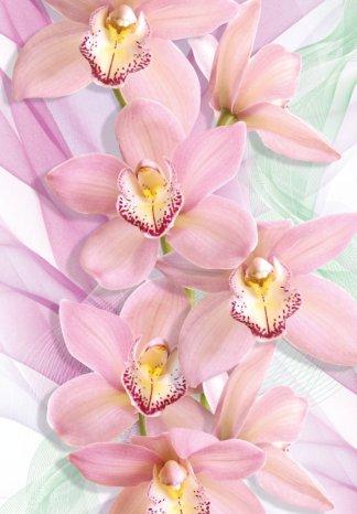 """Фотообои Твоя Планета Премиум """"Орхидеи"""" 194 х 136 см, 4 листа"""