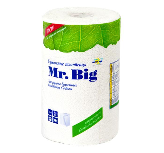 Полотенца бумажные Мягкий знак Mr. Big, двухслойные, цвет: белый, 1 рулонC5Бумажные полотенца Мягкий знак Mr. Big, созданы из экологически чистого волокна - 100% целлюлозы. Высочайшего качества материал обеспечивает отличную впитываемость. Объемное тиснение не только придает изысканность, делает полотенце приятным на ощупь, но и скрепляет слои. Идеально подходят для ежедневного использования. Один рулон бумажных полотенец Мягкий знак Mr. Big равен трем стандартным рулонам. Количество листов: 130 шт. Количество слоев: 2. Размер листа: 25 х 23 см. Состав: 100% целлюлоза.