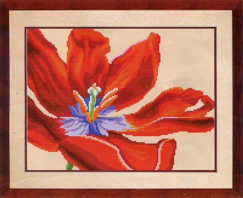 Канва с рисунком для вышивания бисером Hobby & Pro Красный тюльпан, 30 х 23 см546843Канва с рисунком для вышивания бисером Красный тюльпан изготовлена из полиэстера. Рисунок-вышивка, выполненный на такой канве, выглядит очень оригинально. Бисеринки нашиваются на ткань косыми стежками шва полукрест, где каждая бисеринка соответствует одной клетке на схеме. Вышивание отвлечет вас от повседневных забот и превратится в увлекательное занятие! Работа, сделанная своими руками, создаст особый уют и атмосферу в доме и долгие годы будет радовать вас и ваших близких, а подарок, выполненный собственноручно, станет самым ценным для друзей и знакомых. Рекомендуемое количество цветов: 17. Не рекомендуется стирать или мочить рисунок на канве перед вышиванием. УВАЖАЕМЫЕ КЛИЕНТЫ! Обращаем ваше внимание, на тот факт, что рамка в комплект не входит, а служит для визуального восприятия товара.