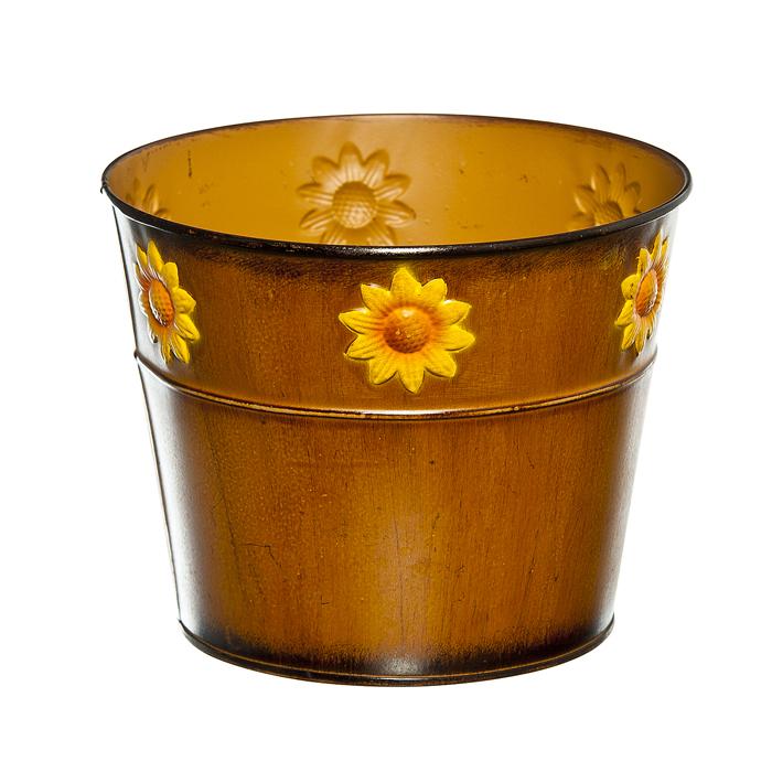 Кашпо декоративное Village People Цветок солнца, цвет: коричневый, диаметр 18 см67063_2Декоративное кашпо Village People Цветок солнца выполнено из металла и оформлено рельефным цветочным изображением. Оригинальное кашпо предназначено для выращивания цветов, трав, растений. Благодаря такому кашпо вы сможете украсить вашу комнату, офис, сад и другие места. Диаметр кашпо: 18 см. Высота кашпо: 14,5 см.